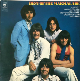 Marmalade (The) - Best Of The Marmalade (LP) (VG-/VG-)